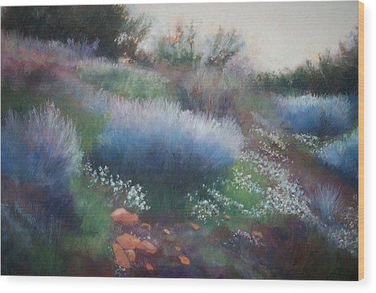 Rocks And Blooms Wood Print by Anita Stoll