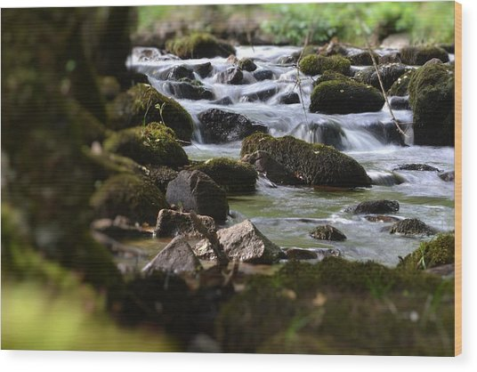Rocks And The River Wood Print by Dave Woodbridge