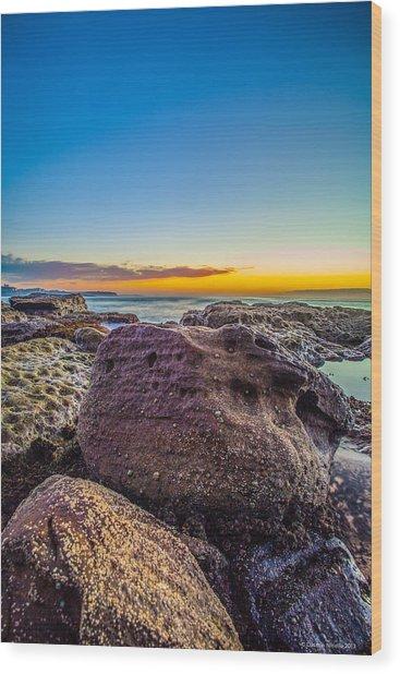 Rocks By The Sea 2 Wood Print by Dasmin Niriella