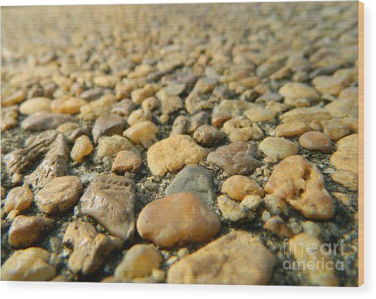 Rocks On My Path Wood Print
