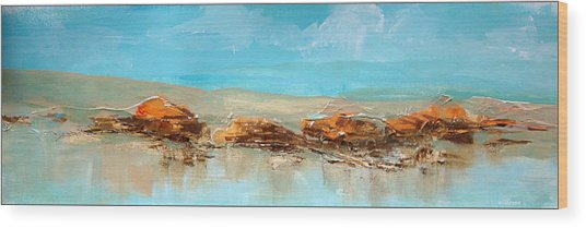 Rocks On The Beach Wood Print by Dale  Witherow