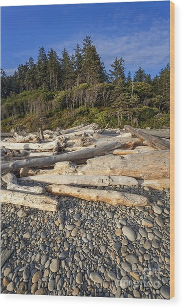 Rocky Beach And Driftwood Wood Print