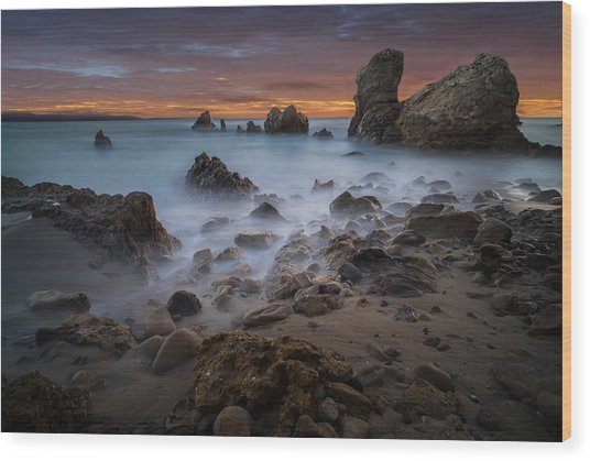 Rocky California Beach Wood Print