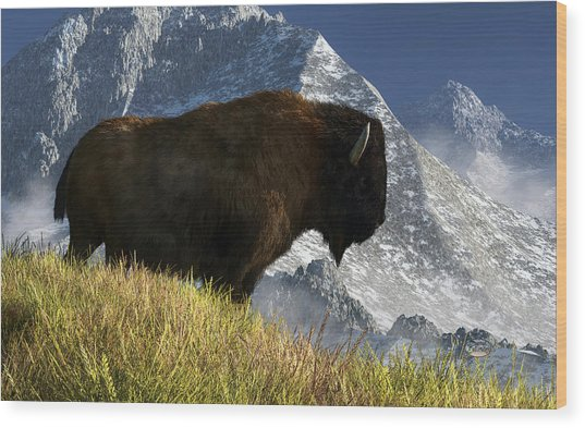 Rocky Mountain Buffalo Wood Print