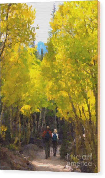 Rocky Mountain Hike Wood Print