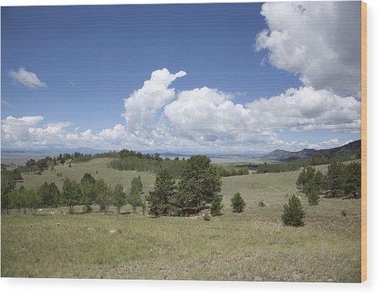 Rocky Mountain Meadow Wood Print