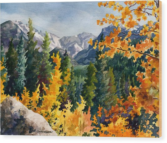 Rocky Mountain National Park Wood Print