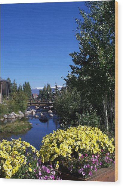 Rocky Mountain Summer Life Wood Print