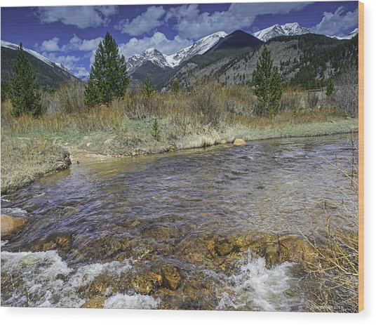 Rocky Mountains Wood Print by Tom Wilbert