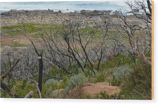 Rocky Outcrop Wood Print