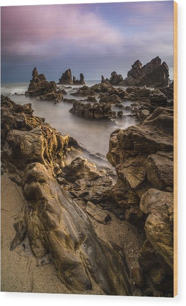 Rocky Southern California Beach 5 Wood Print by Larry Marshall
