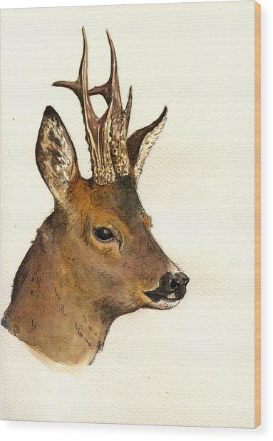 Roe Deer Head Study Wood Print