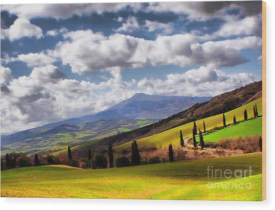 Rolling Hills Of Tuscany Wood Print