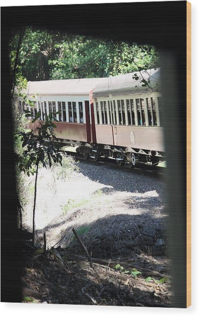 Wood Print featuring the photograph rolling Stock by Debbie Cundy
