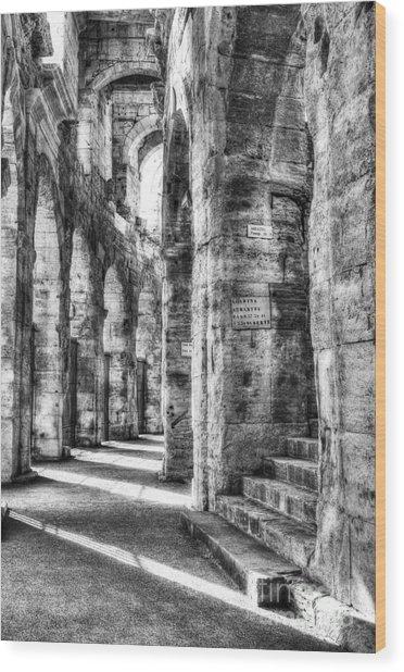 Roman Arena At Arles Bw Wood Print by Mel Steinhauer