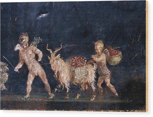 Roman Fresco Showing Flower Dealers Wood Print by Patrick Landmann/science Photo Library