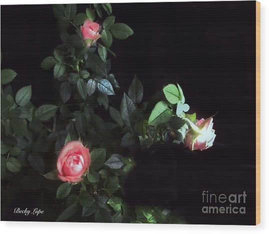Romance Of The Roses Wood Print