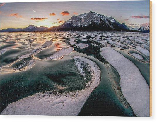 Romance On Ice Wood Print by Charles Lai