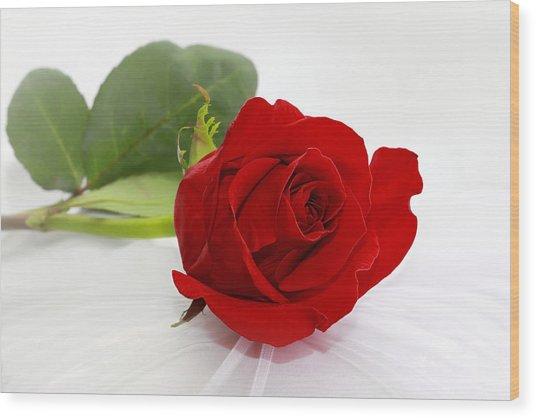 Romantic I Love You Red Rose Wood Print