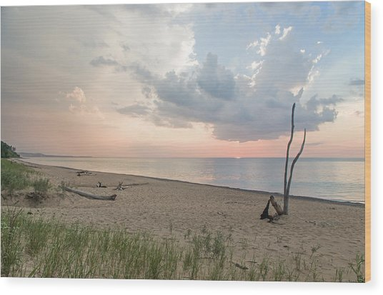 Romantic Sunset At Agate Beach Wood Print