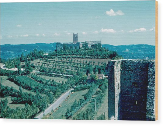 Romeo Castle 1962 Wood Print by Cumberland Warden