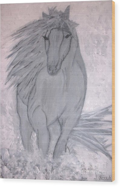 Romeo The White Stallion Wood Print