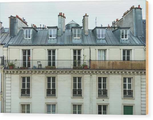 Roof Of Paris Wood Print