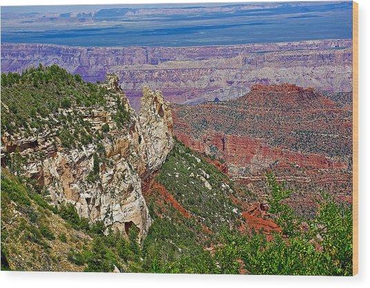 Roosevelt Point Two On North Rim/grand Canyon National Park-arizona   Wood Print