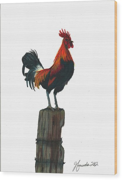 Rooster Beyond The Morning Wood Print