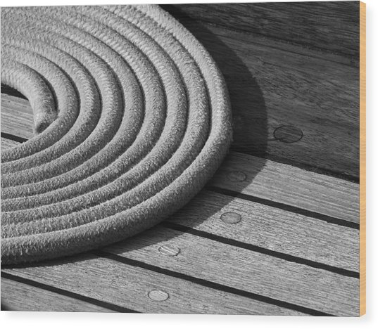 Rope Coil Wood Print by Tony Grider