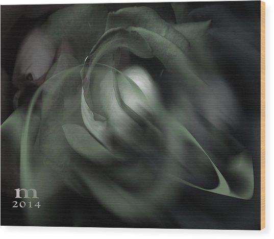 rose 18X24 1 Wood Print