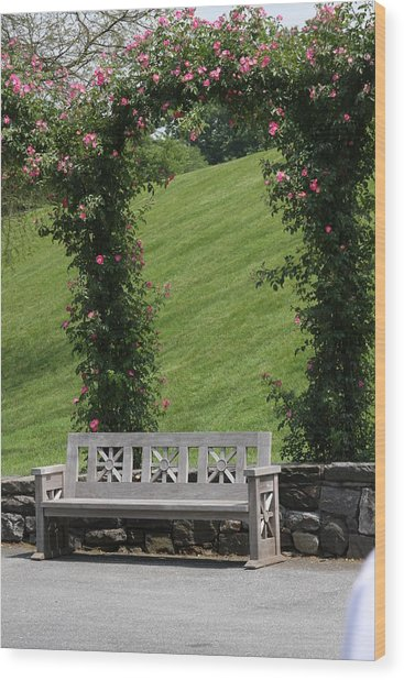 Rose Arch At Longwood Gardens Wood Print by Vadim Levin