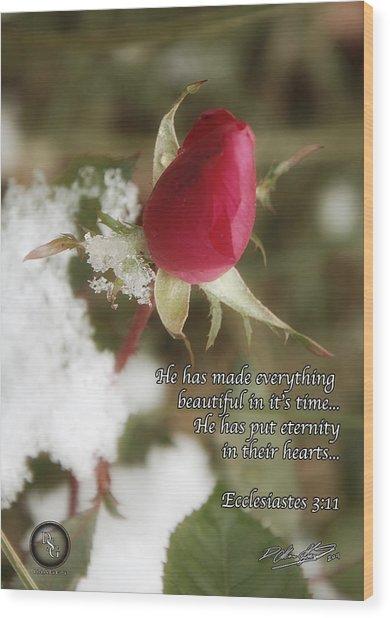 Rose Bud In Snow Wood Print