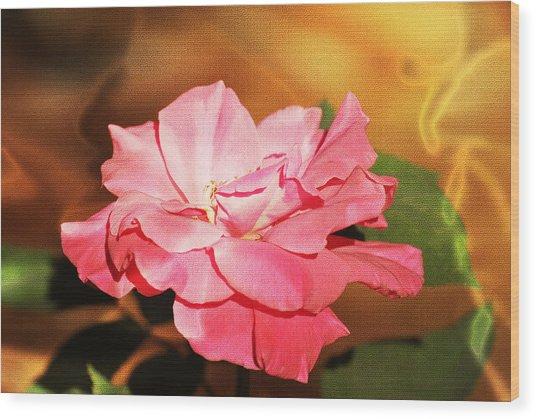 Rose Delight Wood Print