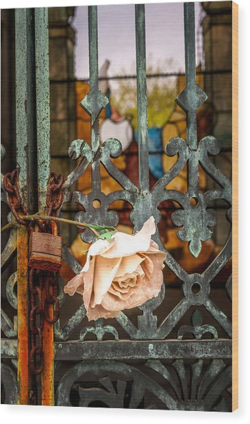 Rose In Remembrance Wood Print