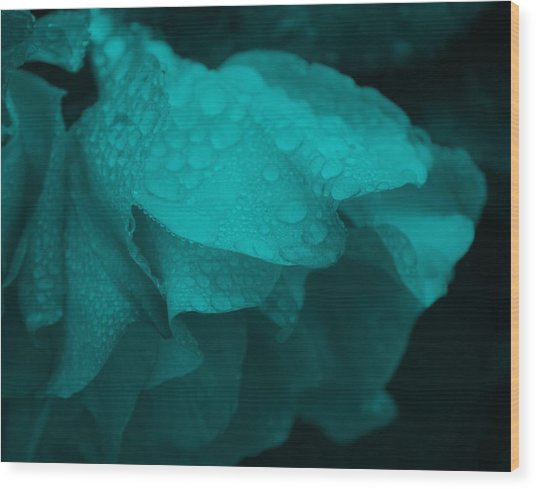 Rose In Turquoise Wood Print