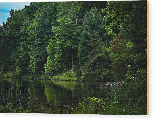Rose Lake Beauty Wood Print