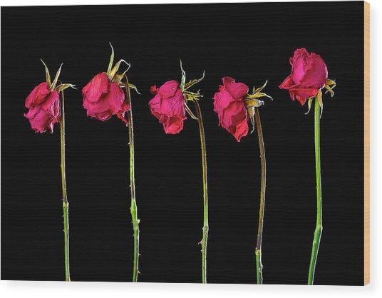Rose Lineup Wood Print