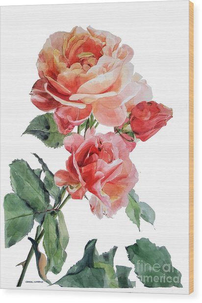 Watercolor Of Red Roses On A Stem I Call Rose Maurice Corens Wood Print