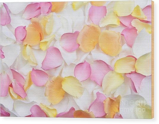 Rose Petals Background Wood Print