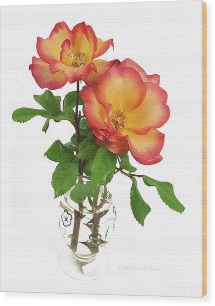 Rose 'playboy' Wood Print