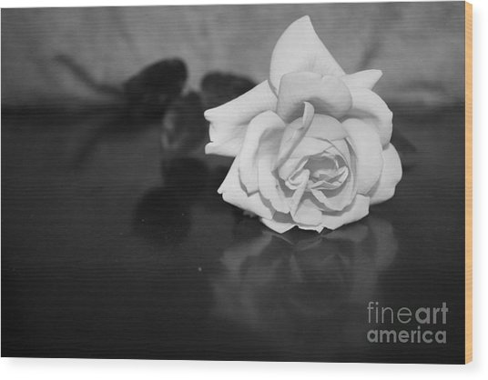 Rose Reflection Wood Print