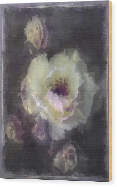 Rose Spray Wood Print by Jill Balsam