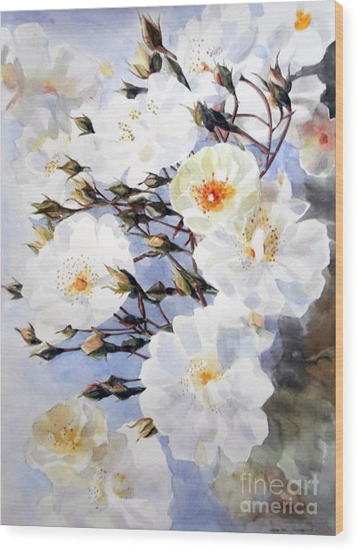 Wartercolor Of White Roses On A Branch I Call Rose Tchaikovsky Wood Print
