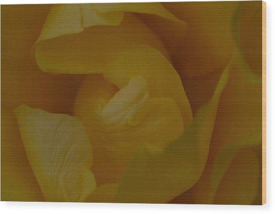 Rose7 Wood Print by Kennith Mccoy