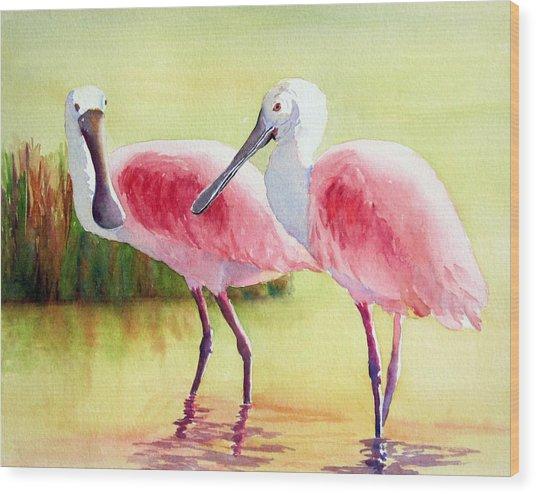 Roseate Spoonbills Wood Print