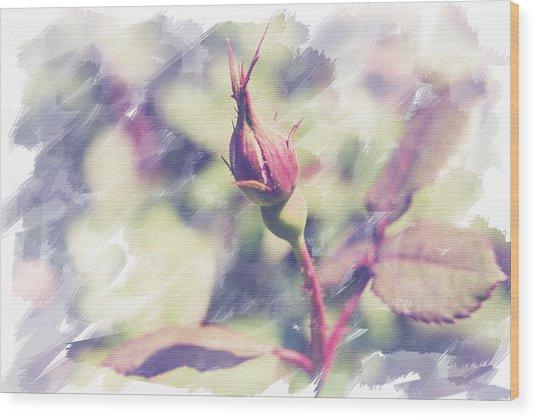 Rosebud Wood Print by Eric Ziegler