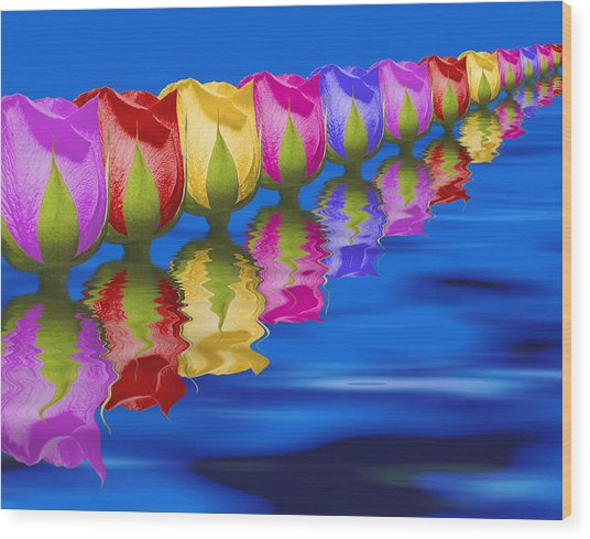 Roses Floating Wood Print