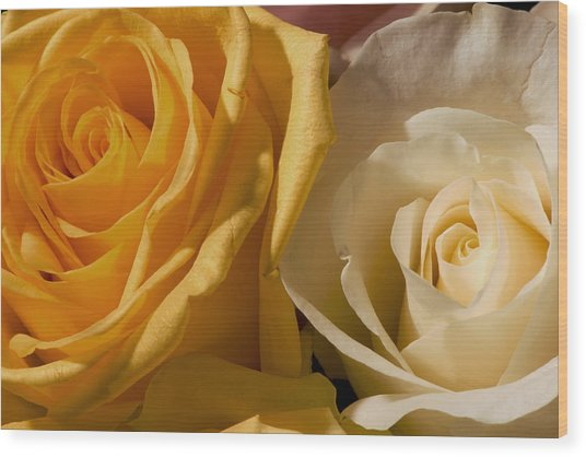 Roses For The Occasion Wood Print by Denis Darbela