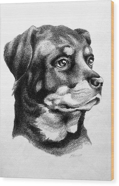 Rottweiler Devotion Wood Print by Patricia Howitt